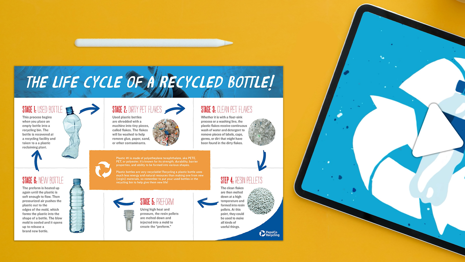 What Is the Life Cycle of a Recycled Plastic Bottle?